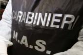 Laboratorio clandestino di conserve ad Avezzano (AQ), denunciato 50enne cerignolano